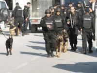 بریتانیا نسبت به وقوع حملات تروریستی بیشتر در تونس هشدار داد