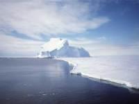 نگرانی از بالا آمدن شدید دریاها در اثر ذوب یخهای قطب جنوب
