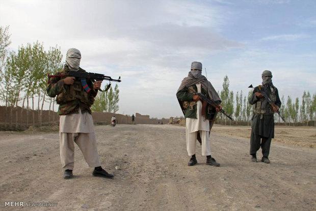 زندانی مخالفان مسلح در افغانستان-Persian-Hrald-Australia