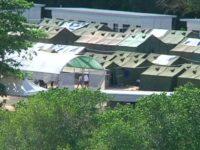 استرالیا: آمریکا بررسی مدارک پناهجویان در نائورو را متوقف کرده است