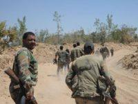 نیروهای اسد نیمی از غوطهشرقی را تصرف کردند