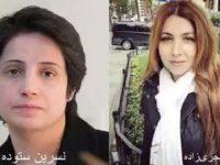 شاپرک شجریزاده به قید وثیقه از زندان آزاد شد