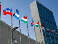 انتقاد گزارشگر ویژه شورای حقوق بشر سازمان ملل از بازگشتن تحریمهای ایران