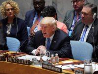 جلسه شورای امنیت؛ حمله ترامپ به ایران و دفاع کشورهای دیگر از برجام